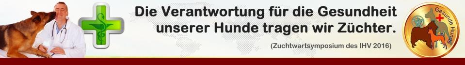 Banner-Gesundheit-Neu